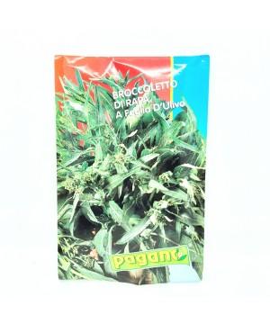 Brassica Oleracea / Cima di...