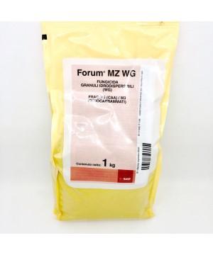 Forum MZ WG